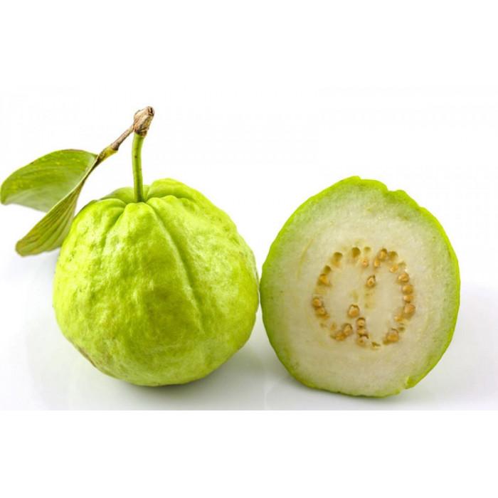 Guava/Amrud/Jamfal (1 Lb)