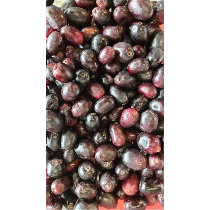 FRESH Jamun Black Fruit (1 Lb)