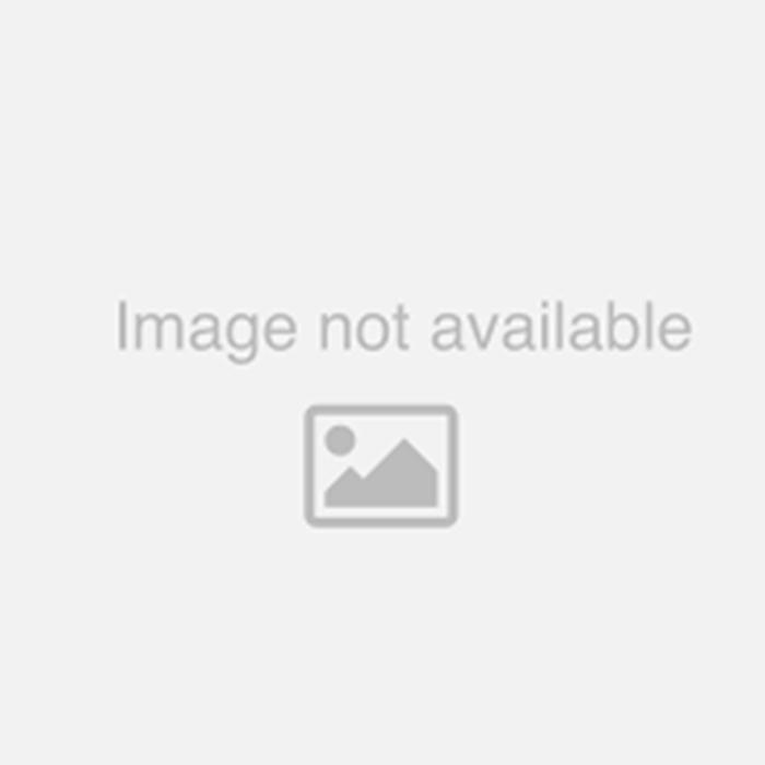 Anjeer Cutlet/Fig Rolls (1 Lb)  BB-DEC 5 2020